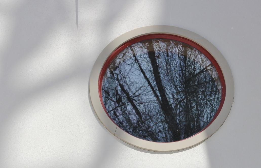 Maples through a glass, darkly