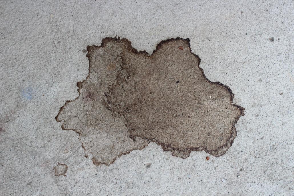 Salt and Ice Rorschach