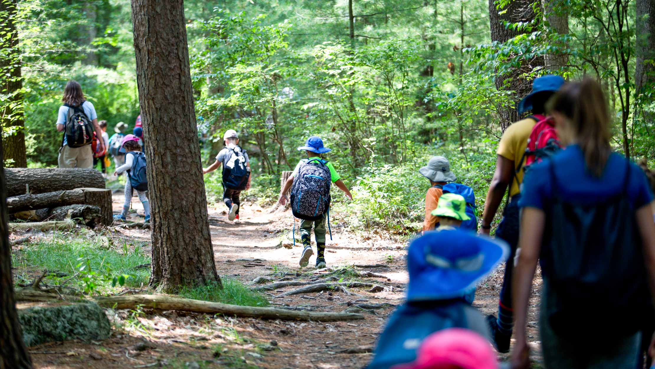 Campers hiking through the woods