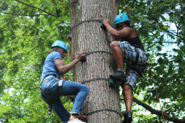 Staff climbing the climbing tree