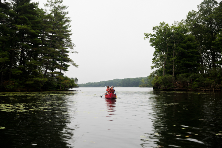 Campers canoeing down a river