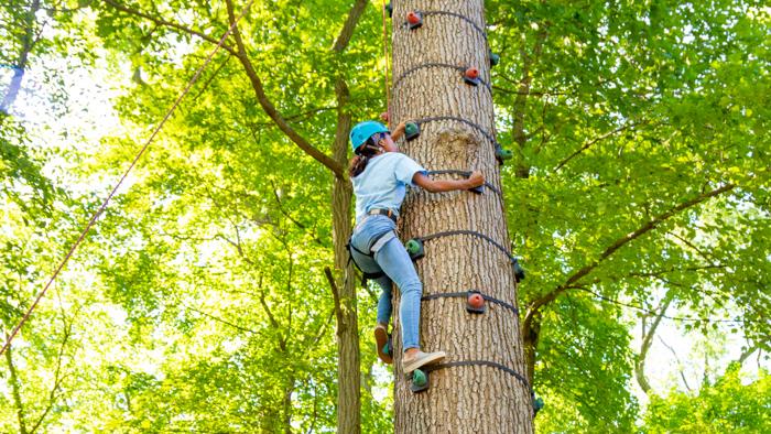 Camper climbing the climbing tree