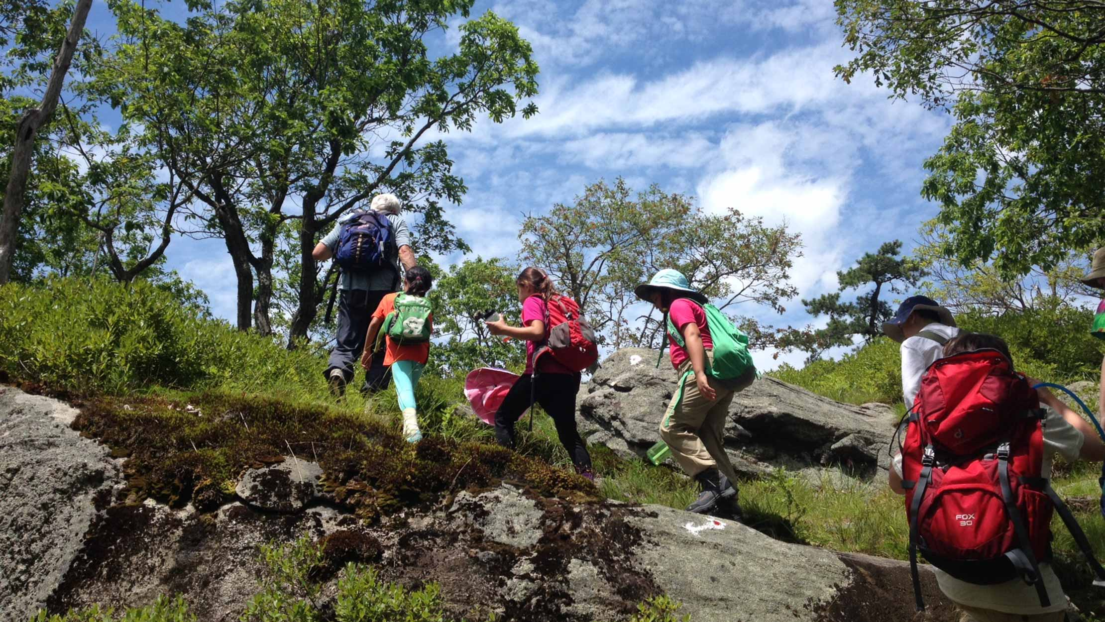 Group of campers backpacking up a hill