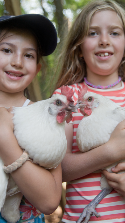 Two campers holding white chickens