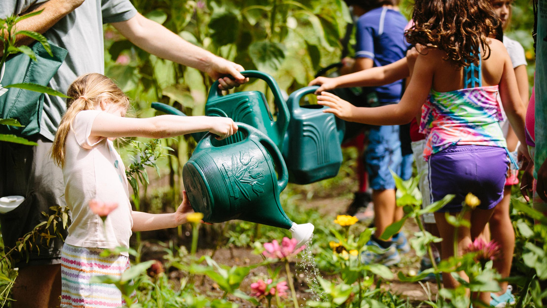 Campers watering the garden with watering cans